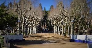 Vista de las Pajaritas de Huesca