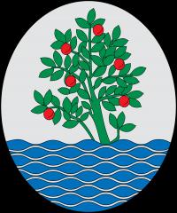Contactar con el ayuntamiento de  Arenys de Mar