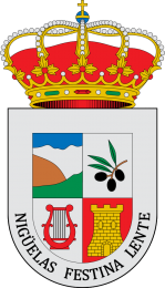 Contacte con el ayuntamiento e Nigüelas