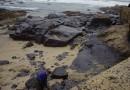 Repsol empieza los sondeos de petroleo en Canarias